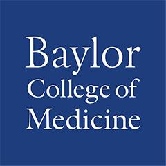Baylor logo 240x240px