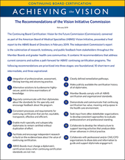 vision initiative recommendations and action plan